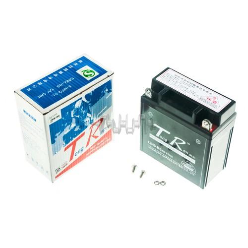 Акумулятор (АКБ) 12V 5А AGM (високий) (119x60x128, чорний) TR арт.A-954