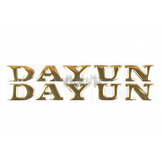 Наклейка   буквы   DAYUN   (19х4см, 2шт, золотые)   (#DYN)